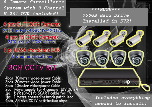 8 Camera 8 Channel DVR Surveillance System
